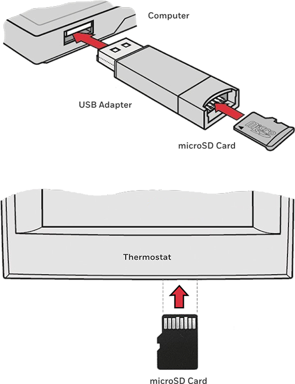 MicroSD Card and USB Adapter
